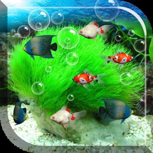 Живые обои на андроид рыбки скачать бесплатно 11